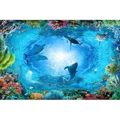 Фотообои Подводный мир | арт.3011