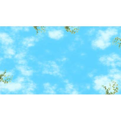 Фотообои Лазурное небо | арт.303