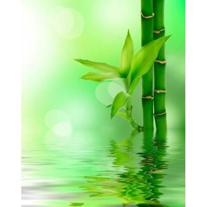 Фотообои Бамбук в воде | арт.28263