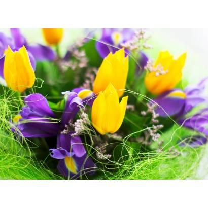 Фотообои Тюльпаны | арт.28274