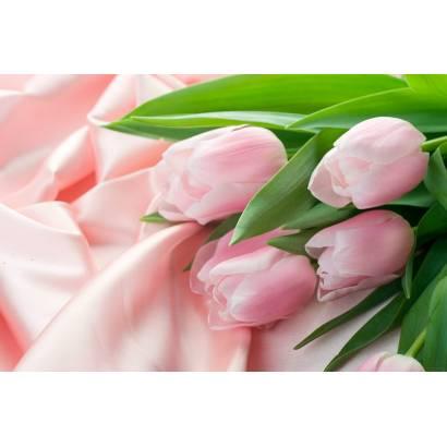 Фотообои Тюльпаны | арт.28291