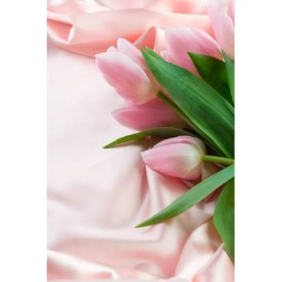 Фотообои Тюльпаны | арт.28292