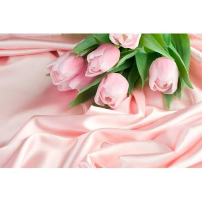 Фотообои Тюльпаны | арт.28294