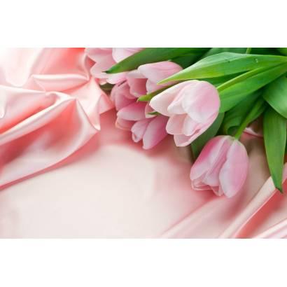 Фотообои Тюльпаны | арт.28295