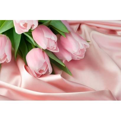 Фотообои Тюльпаны | арт.28297