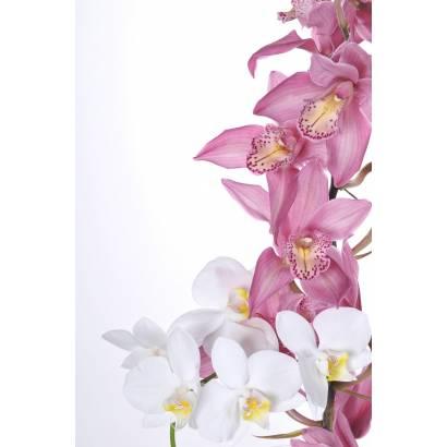 Фотообои Орхидея | арт.28373
