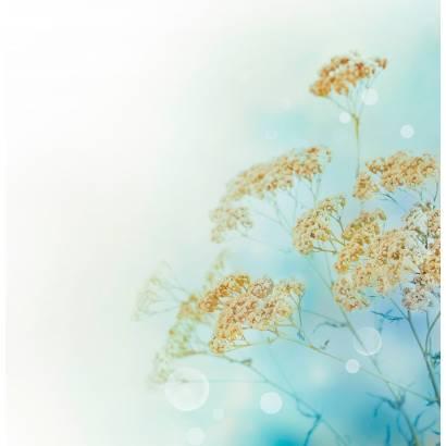 Фотообои Полевые Цветы | арт.28397