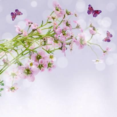 Фотообои Полевые Цветы | арт.28402