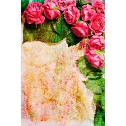 Фотообои Цветы | арт.28453
