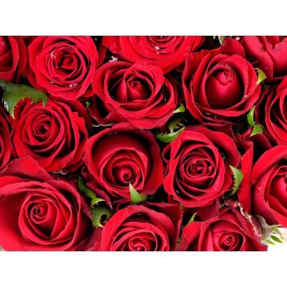 Фотообои Букет красных роз | арт.28478