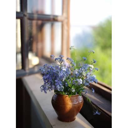 Фотообои Букет полевых цветов | арт.28490