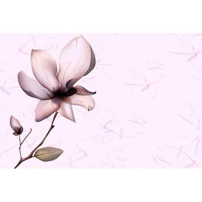 Фотообои Цветок | арт.28615