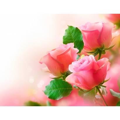 Фотообои Три розы | арт.28647