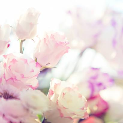 Фотообои Нежные розы | арт.28660