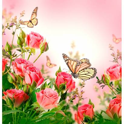 Фотообои Розы | арт.28690