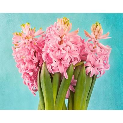 Фотообои Розовые гиацинты | арт.28693