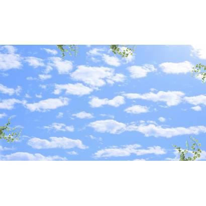 Фотообои веточки и перистые облака | арт.3027