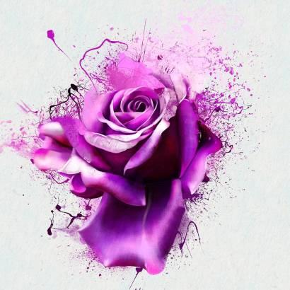 Фотообои 3D роза | арт.28697