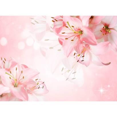Фотообои Лилии на розовом фоне | арт.28699